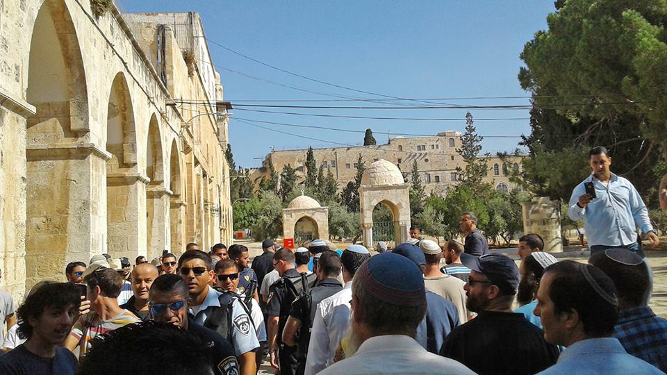 Egipto condena a Israel por la visita de judíos radicales al Monte del Templo
