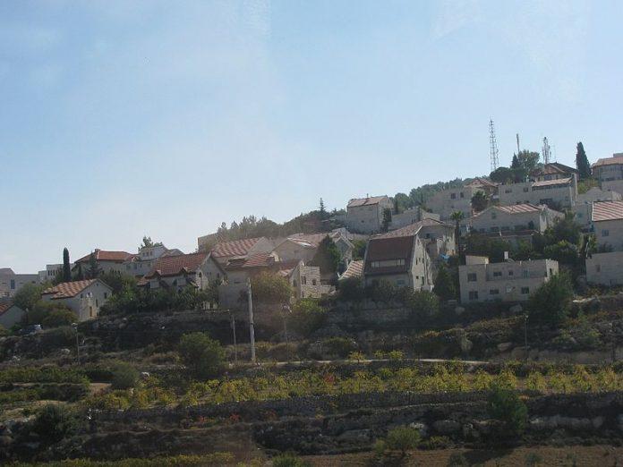 Miles de cabañas para recordar el éxodo de EgiptoLa AP libera a cuatro palestinos detenidos por visitar la sucá de un asentamiento israelí