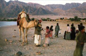 8-Bedouins