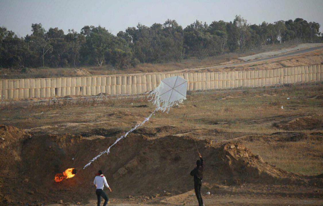 Miles de pavos mueren en Israel por el incendio de una comenta lanzada desde Gaza